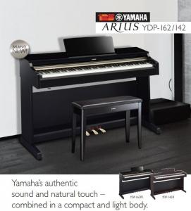 Yamaha Arius blog
